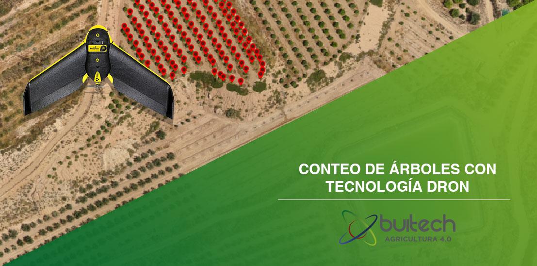 Conteo de arboles con tecnologia dron